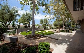 Santa Fe Springs Library Landscape
