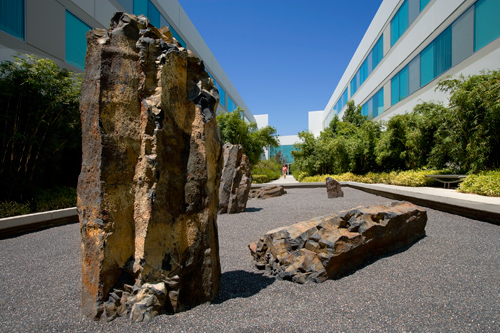 Zen Garden at Toyota South Campus