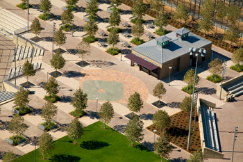 Water Efficient Landscape at Brea Sports Park