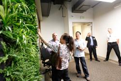 Living Vegetative Wall LPA Irvine